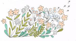 illustration fleurs alexia bertholet