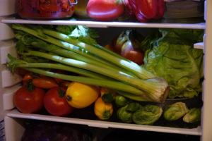 cycle en terre légumes frigo