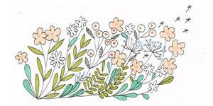 partenaires alexia bertholet fleurs illustration
